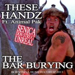 15/ THE BAR BURYING ft ANIMAL PAK